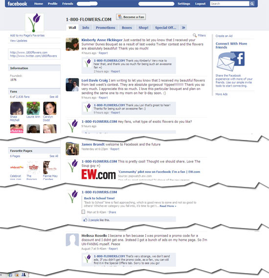 Example Site And Situation: A Good Example Of An E-Commerce Retailer Using Facebook